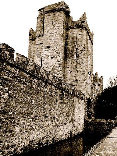 Castles in Dublin - Drimnagh